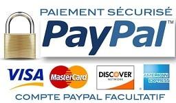 payment ultra securisé dépannage informatique a distance